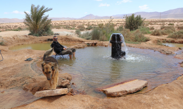 Genug von Marokko! Oder doch nicht?