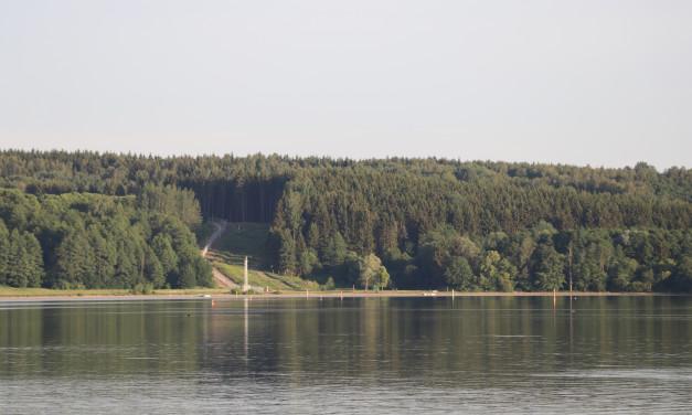 Radwege im Wald